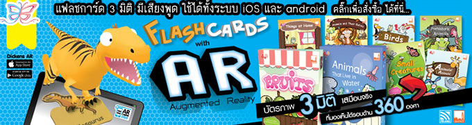 Dickens Flashcards AR